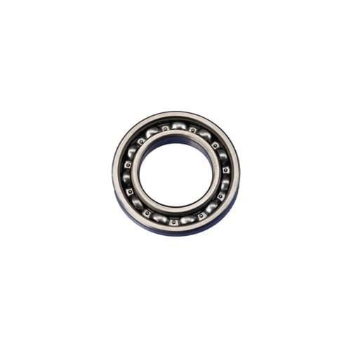 Picture of BEARING ASSY (6007)*