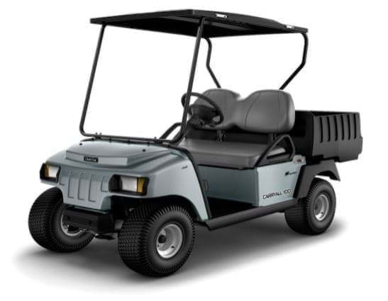 Picture of 2018 - Club Car - Carryall 100 - G&E (105344110)
